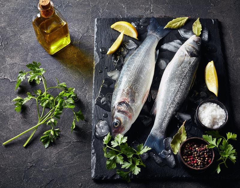 Two fresh raw whole sea bass, close-up. Two fresh raw whole sea bass with lump ice, lemon slices, spices and herbs on a slate plate on a concrete table, view stock photos