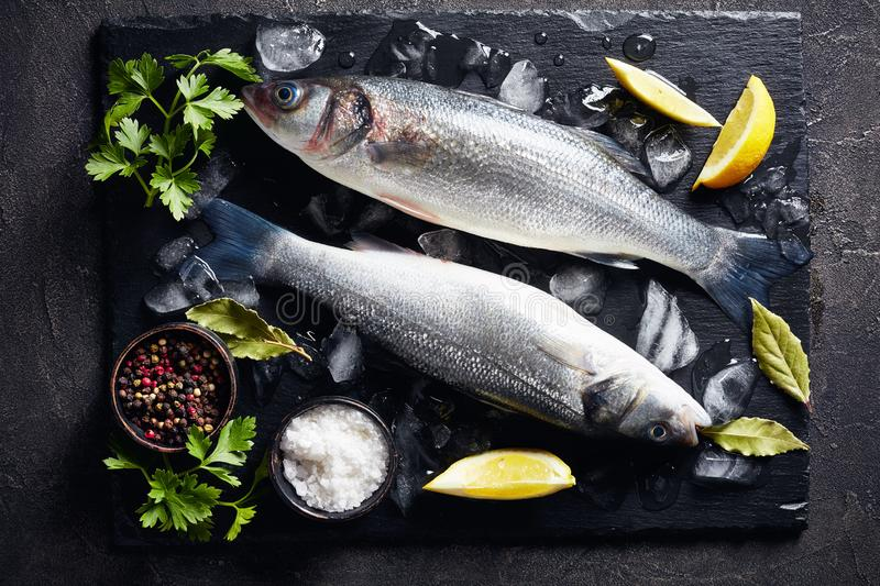 Two fresh raw whole sea bass, close-up. Two fresh raw whole sea bass on slate plate with lump ice, lemon slices, spices and herbs, view from above, close-up stock photography