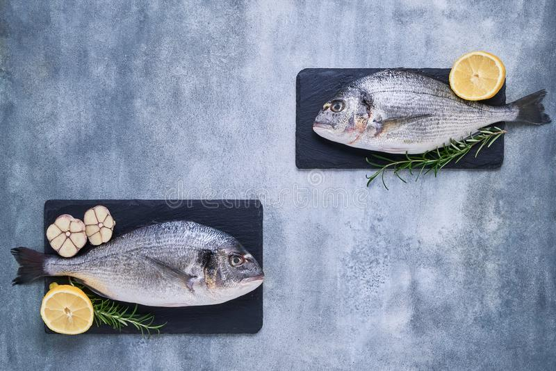 Two Fresh Royal Dorade on blue background. Healthy food concept. Top view, copy space. Mediterranean seafood concept stock photos