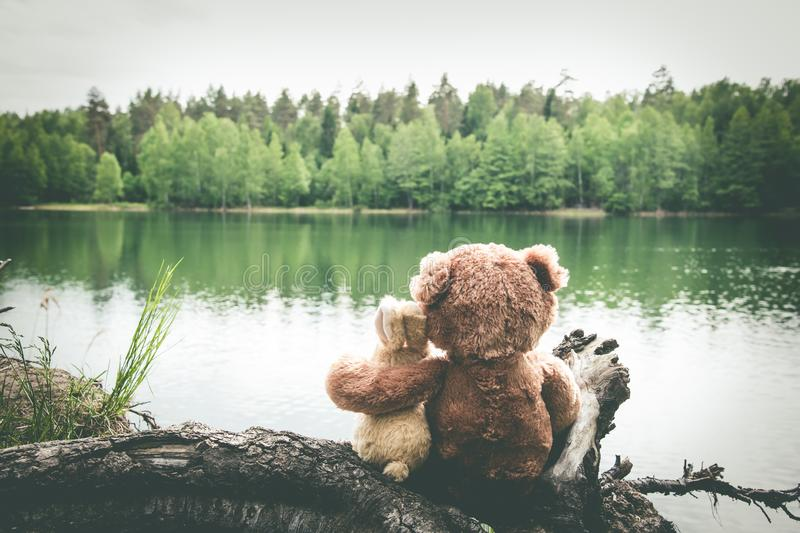 Two friends, bunny and teddy bear are sitting on shore of forest lake, dreaming and remembering. Back view royalty free stock image