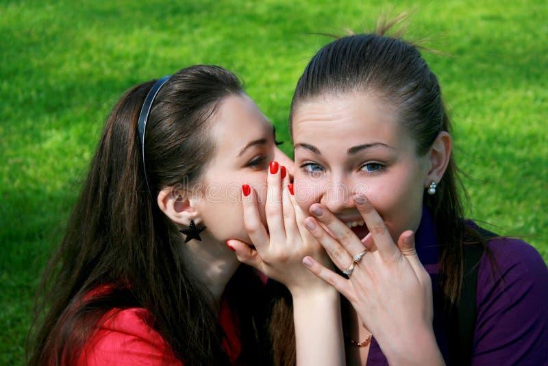 Two friends gossip. Two friends making gossip, green grass stock photo