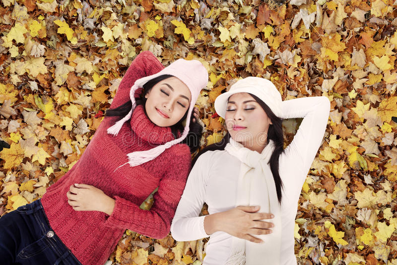 Two friends sleeping in Autumn park. Two friends are sleeping on Autumn leaves in the park royalty free stock photography