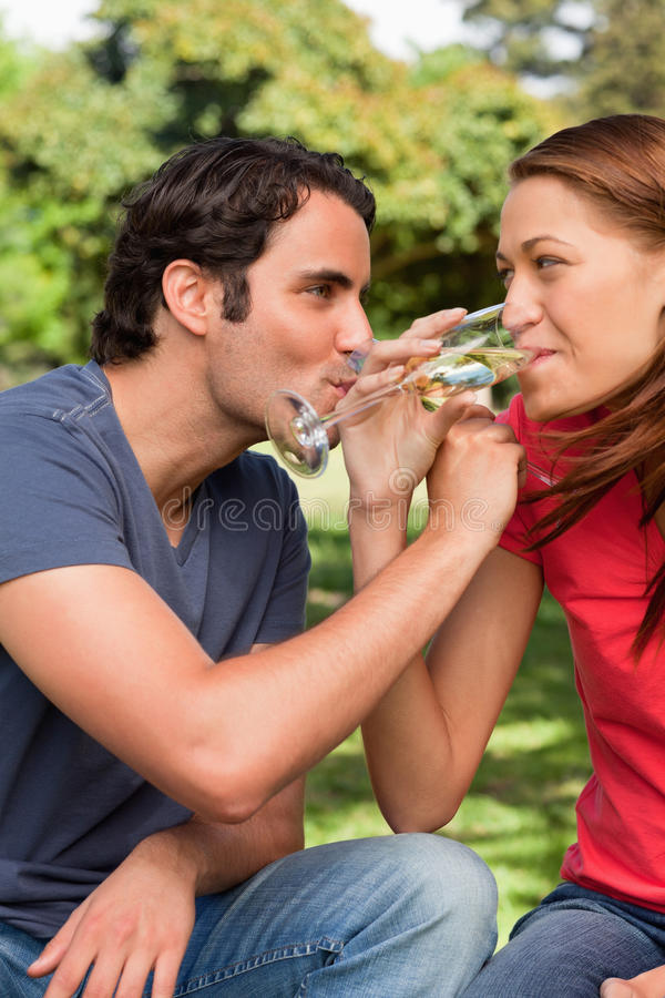Download Two Friends Smiling As They Link Their Arms Together While Drink Stock Image - Image: 25332139