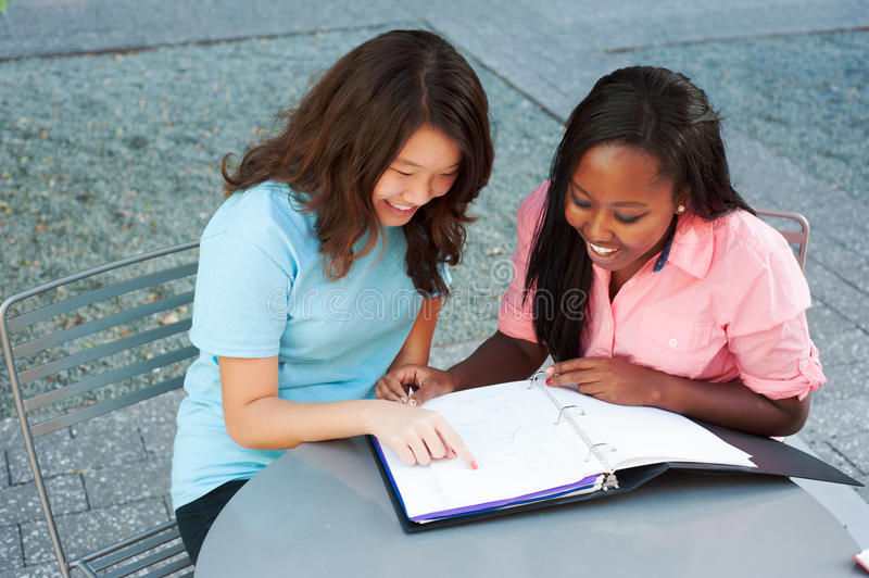 Two friends studying together stock images
