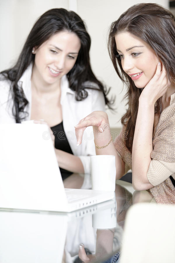 Download Two friends using a laptop stock photo. Image of reading - 33522108