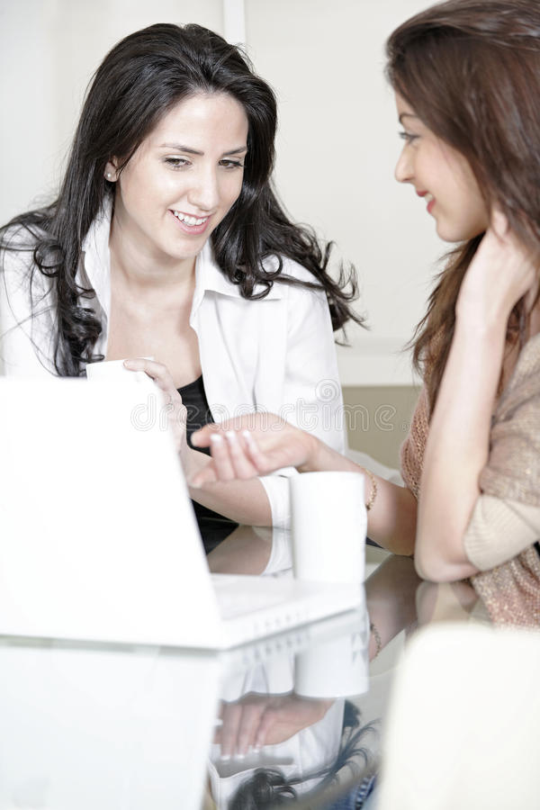Download Two friends using a laptop stock photo. Image of happy - 33522110