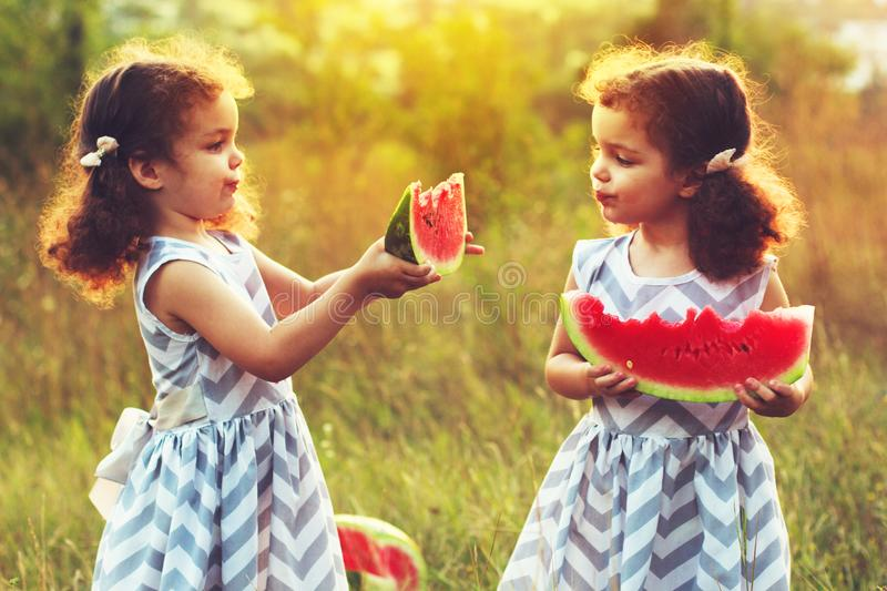 Two funny little sisters eating watermelon outdoors on warm and sunny summer day. Healthy organic food for little kids. Twins girl royalty free stock image