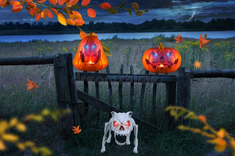 Two funny orange halloween pumpkins with glowing eyes with angry skeleton dog on a stormy windy halloween night stock illustration