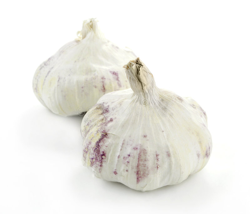 Two Garlic Buds. Two garlic cloves against a white background royalty free stock photography