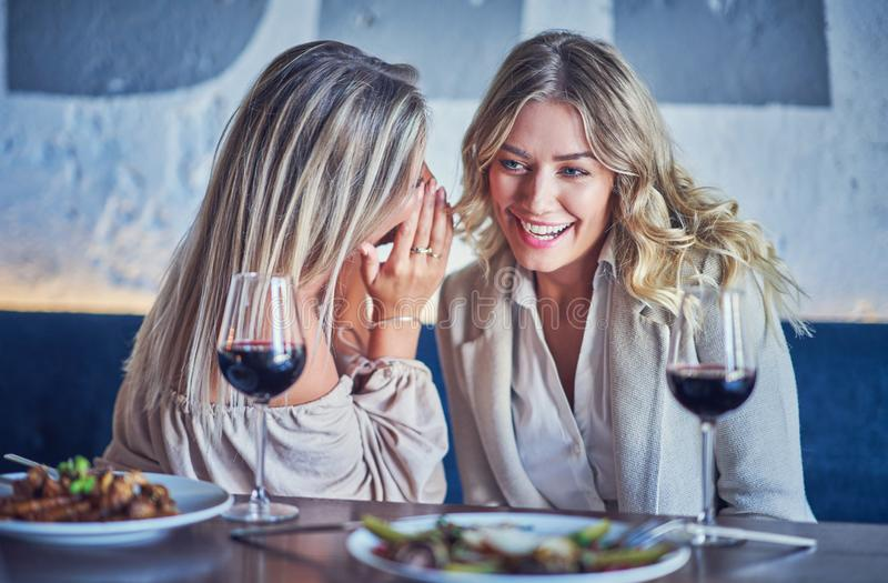 Two girl friends eating lunch in restaurant royalty free stock photos