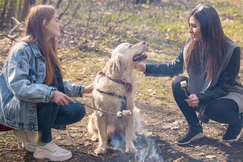 Two friends and a dog stock photography