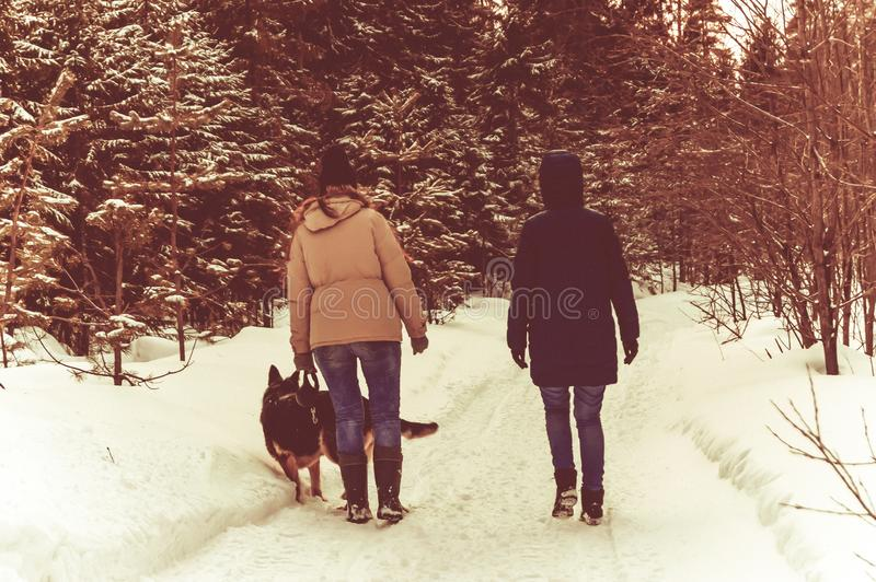 Two girls and a dog are walking in the winter forest royalty free stock photography