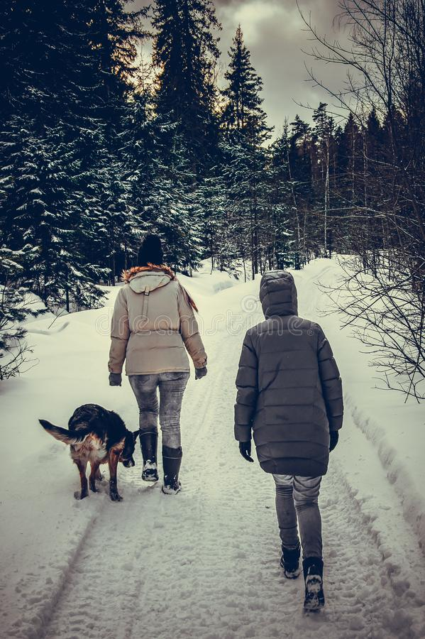 Two girls and a dog are walking in the winter forest stock image
