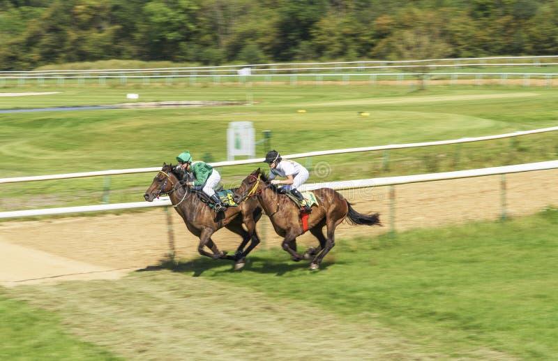 Two girls jockey riding race horse royalty free stock image