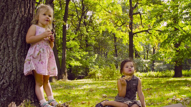 Two girls in the park eating pizza. royalty free stock photo