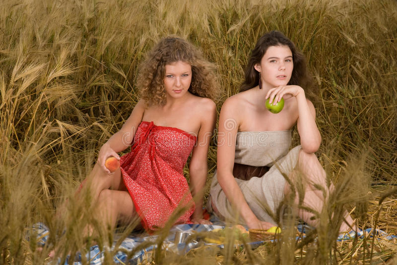 Download Two Girls On Picnic In Wheat Field Stock Image - Image: 11449095