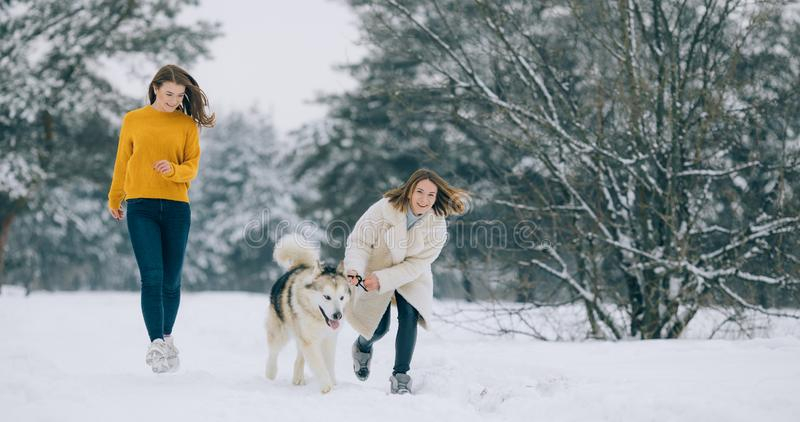 Two girls are running on a snowy forest road with a dog Alaskan Malamute royalty free stock photography