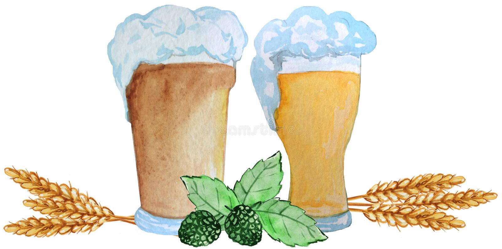 Two glasses of beer with ears of wheat, hop leaves on a white background. watercolor illustration for posters, prints vector illustration