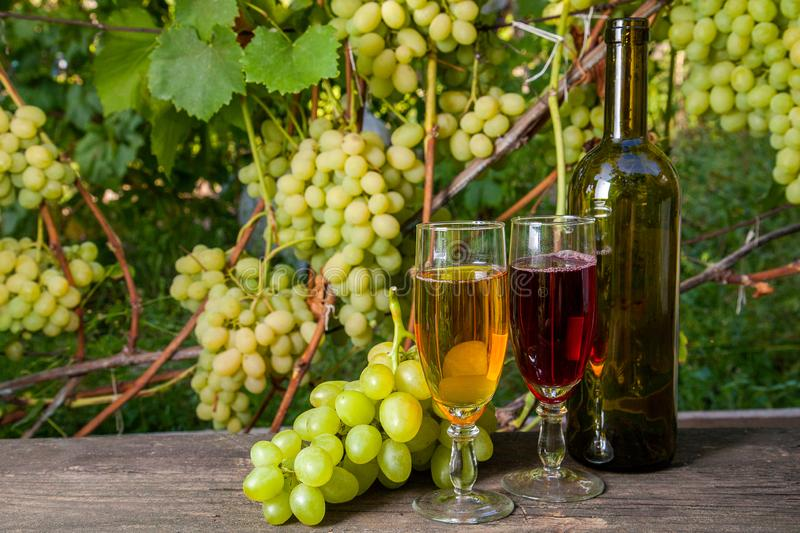 Two glasses of red and white wine and a bunch of grapes on old w stock photos