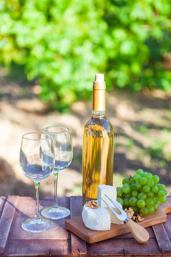 Two glasses Wine, grapes, nuts, cheese on vineyard. Dinner, lunch, romantic picnic, eating on nature. royalty free stock image