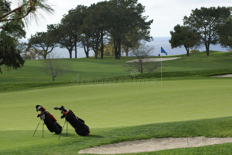 Two Golf Bags On The Golf Course Stock Photography