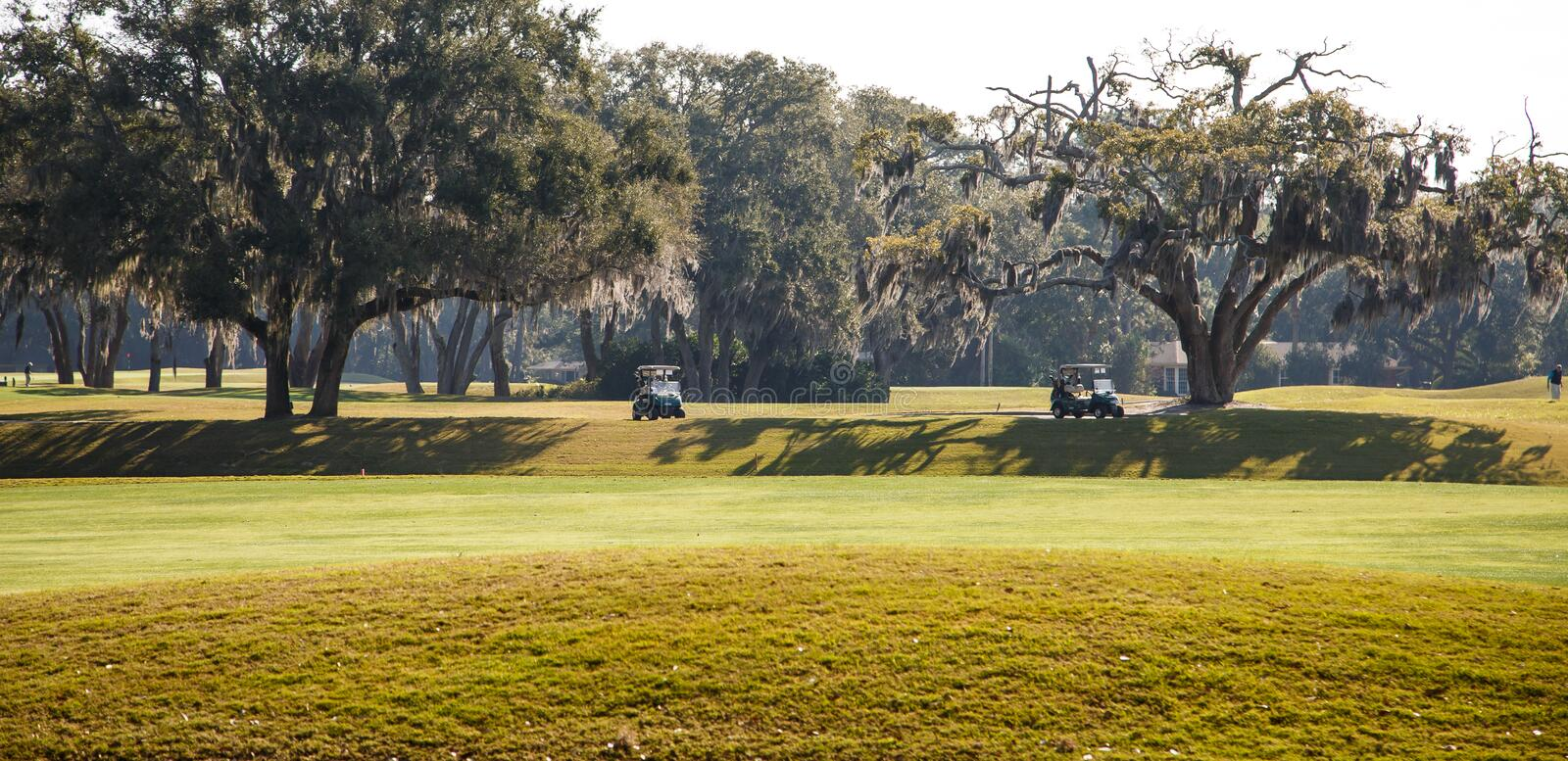 Two Golf Carts on Southern Course. Two golf course parked in the shade of oak trees on a southern golf course stock image