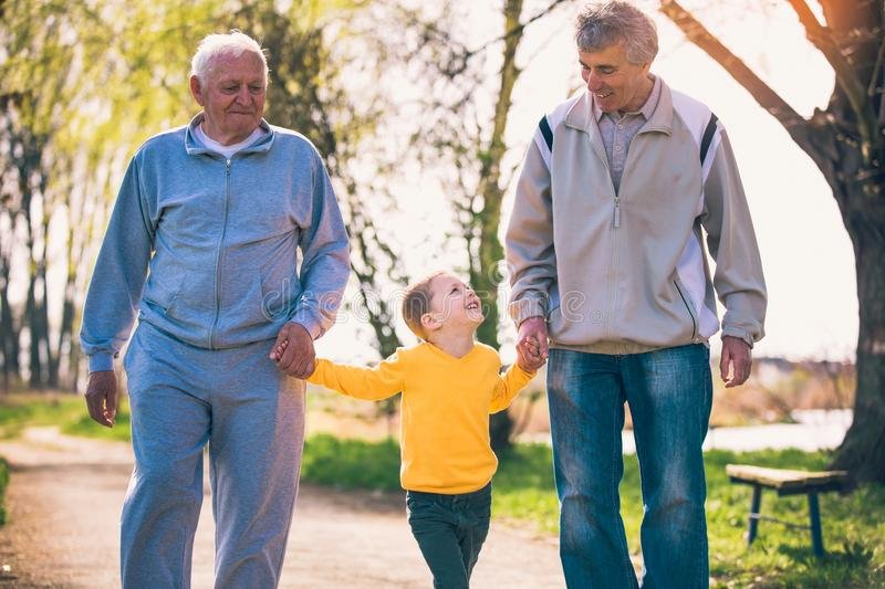 Two grandfather walking with the grandson in the park royalty free stock photo