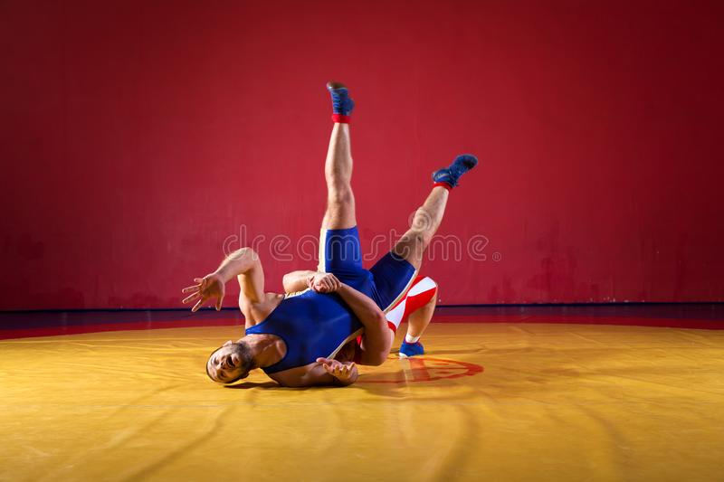 Two young men wrestlers. Two greco-roman wrestlers in red and blue uniform wrestling on a yellow wrestling carpet in the gym stock photography