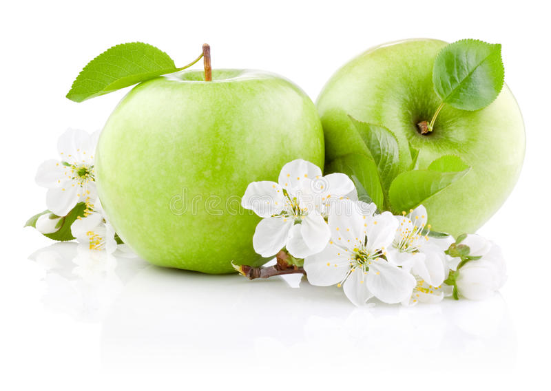 Download Two Green Apples With Leaf And Flowers Stock Photo - Image: 25558194