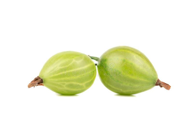 Two green gooseberry. Two fresh green gooseberry on a white background stock photo