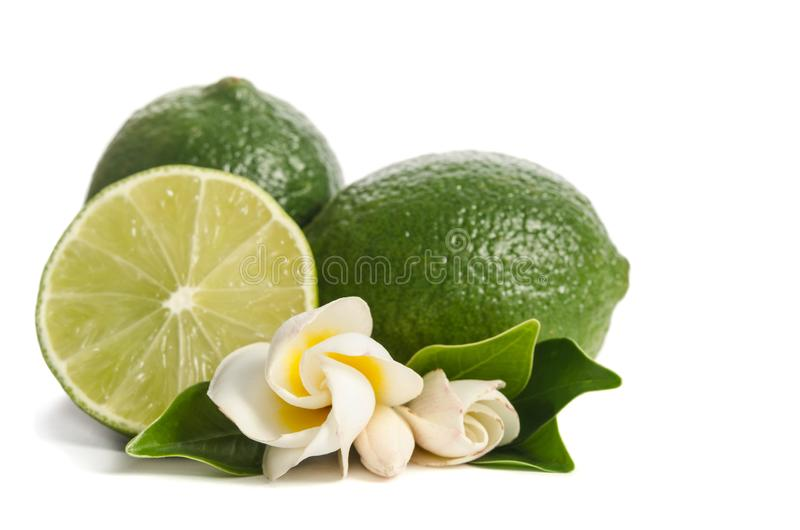 Two green limes with half of juicy lime and beautiful flower stock images