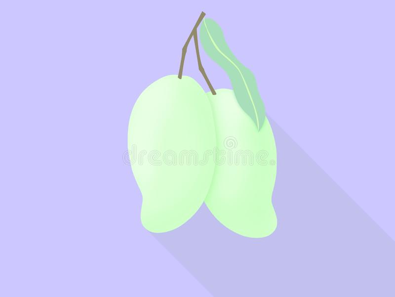 Two green mango of tropical fruit icon for poster in flat design royalty free illustration