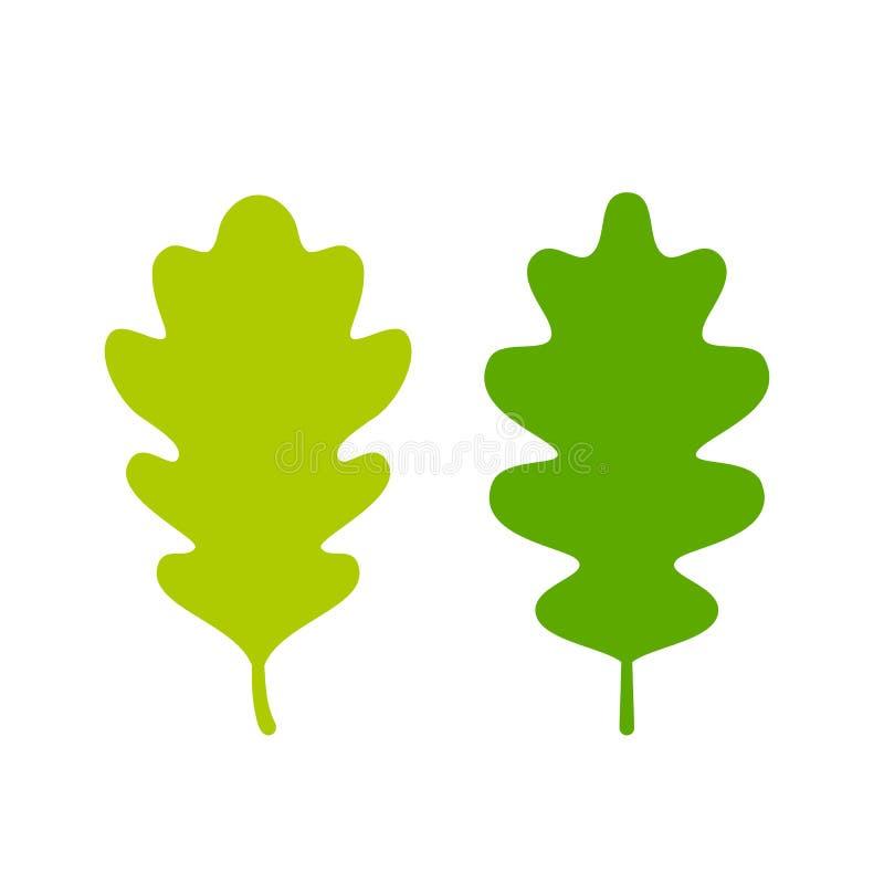 Two green oak leaves. Set vector illustration