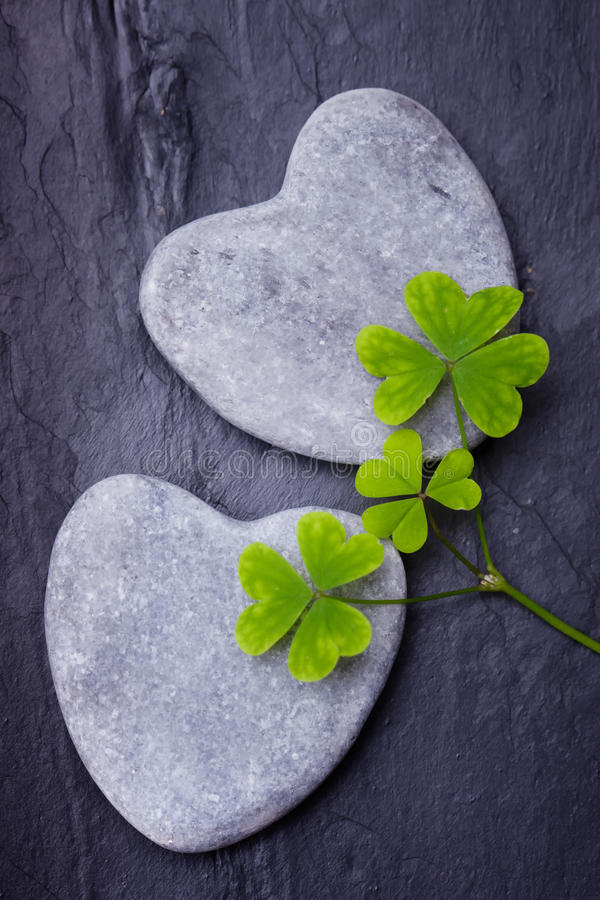 Two grey heart shaped rocks with clovers on a tile backgro stock images