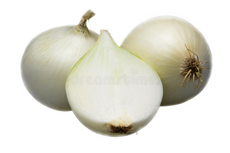 Two and half onion on white background. stock images