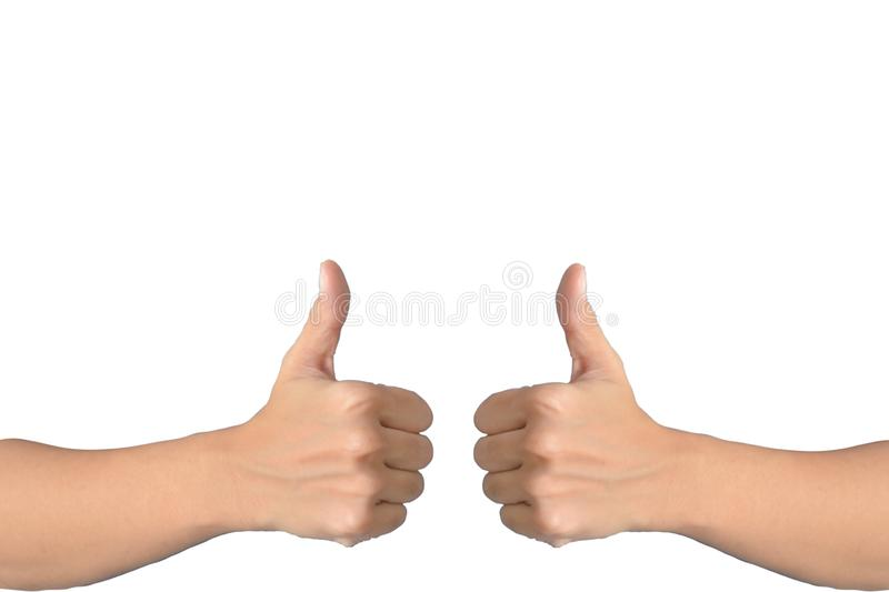 Two hand with thumb up isolated on white background. OK sign, like concept. Human part. Adult, advertise, agreement, arm, attractive, body, business, cute royalty free stock image