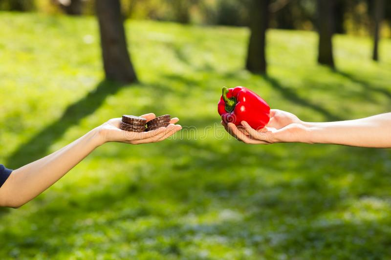 Two hands, female and male, holding and comparing cookie and red pepper. Background of the green park stock images
