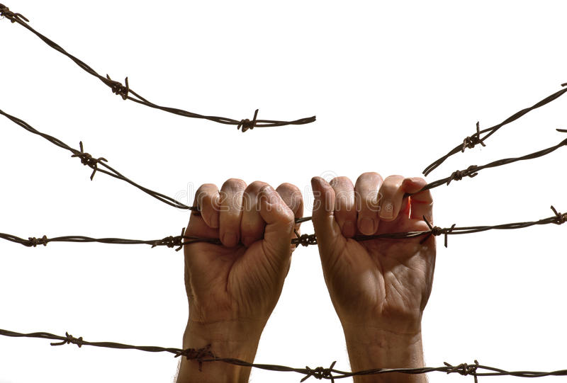 Two hands hanging on the barbed wire royalty free stock images