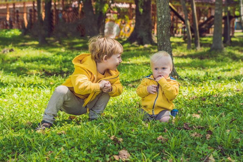 Two happy brothers in yellow sweatshirts in the autumn park royalty free stock photography