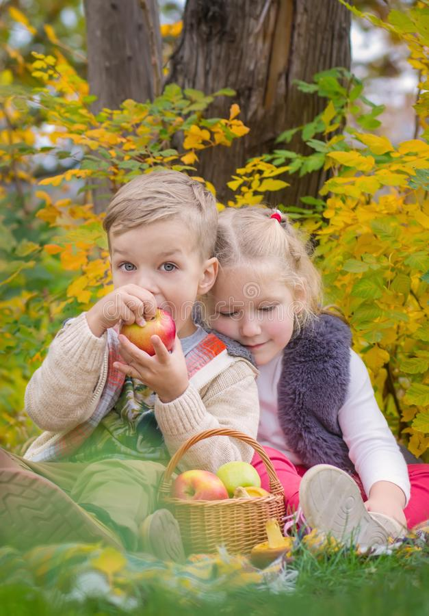 Two happy kids in an autumn park at a picnic stock photo