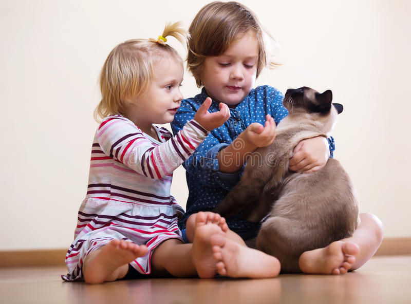 Two happy little girls with cat. Sitting on the floor stock image