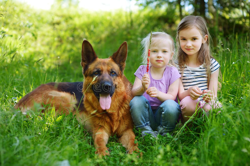 Two happy little girls and their big dog royalty free stock photography