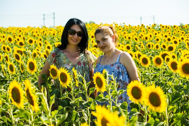 Two friends woman posing in sunflowers field royalty free stock photos