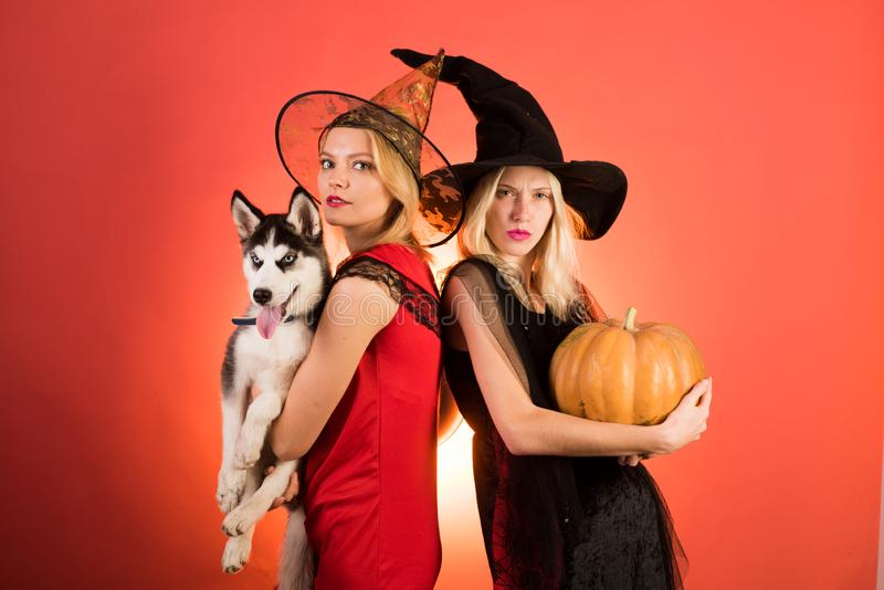 Two happy young women in black and red dresses, costumes witches halloween on party over orange background. Two royalty free stock photos