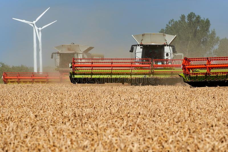 Two harvester unloading corn on tractor. Field, agriculture, land, machine, landscape, nature, food, equipment, farm, farming, combine, work, grain, golden royalty free stock photos