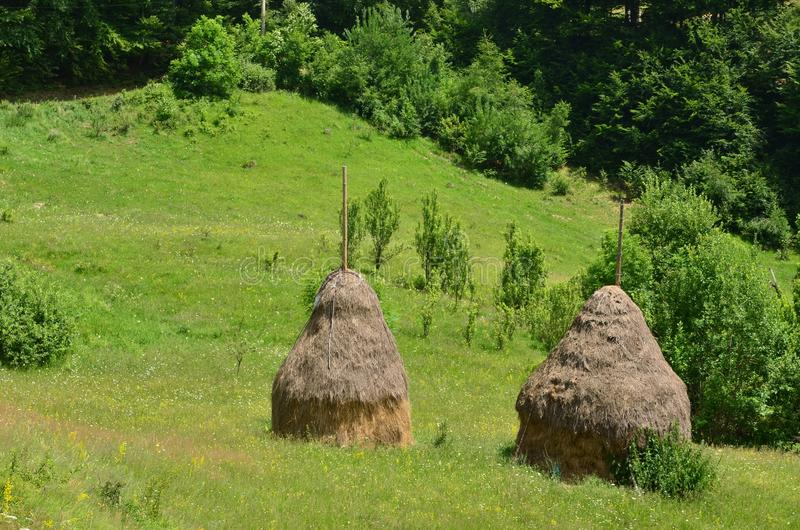 Two haystacks on green meadow royalty free stock photo