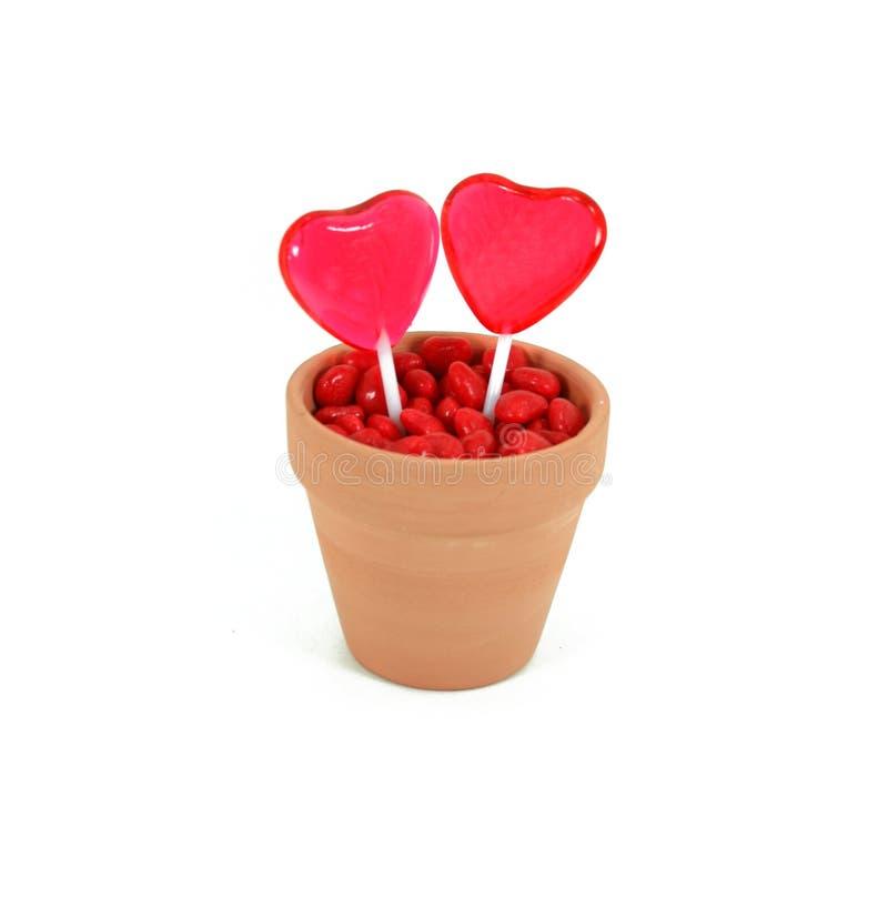 Free Two Hearts Grow Love Stock Photos - 4146543