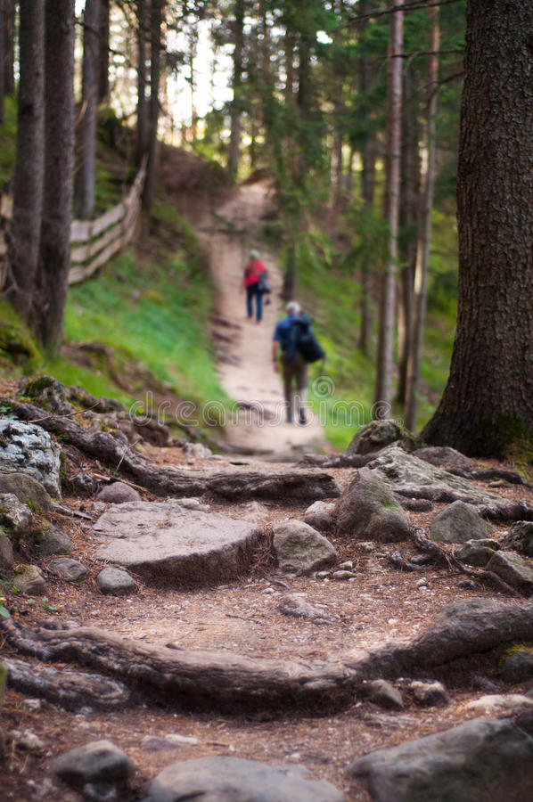 Download Two Hikers On A Mountain Trail Royalty Free Stock Photos - Image: 33965968