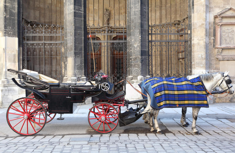 Download Two Horse In Cape With Open Cart Stock Image - Image: 27199261
