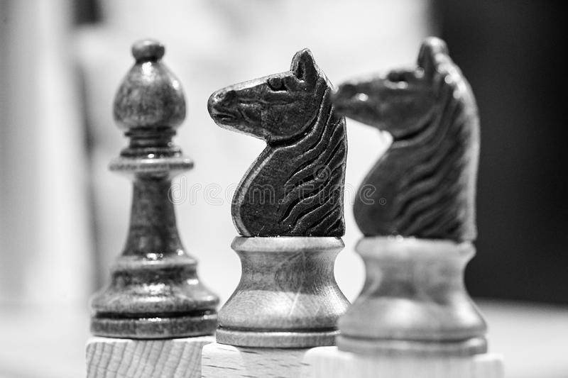 Two horse and a pawn chess piece royalty free stock image
